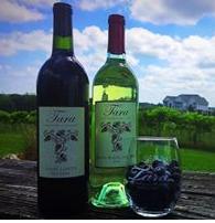Tara Vineyard & Winery