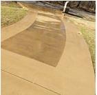 LakeLeader Of The Month 24 texas clean4 CedarCreekLake.Online