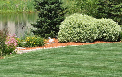Lawn, Landscape and Tree Service