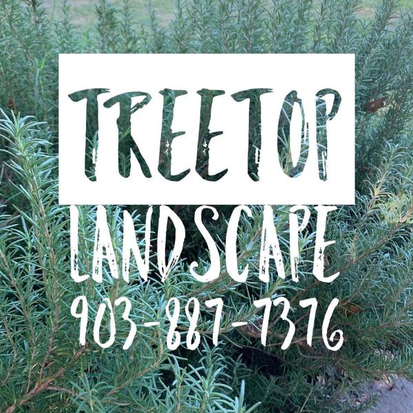 Treetop Landscape