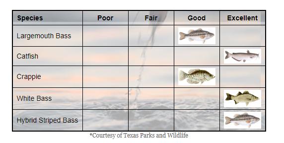 The Williams Group 7 Cedar Creek fishing chart CedarCreekLake.Online