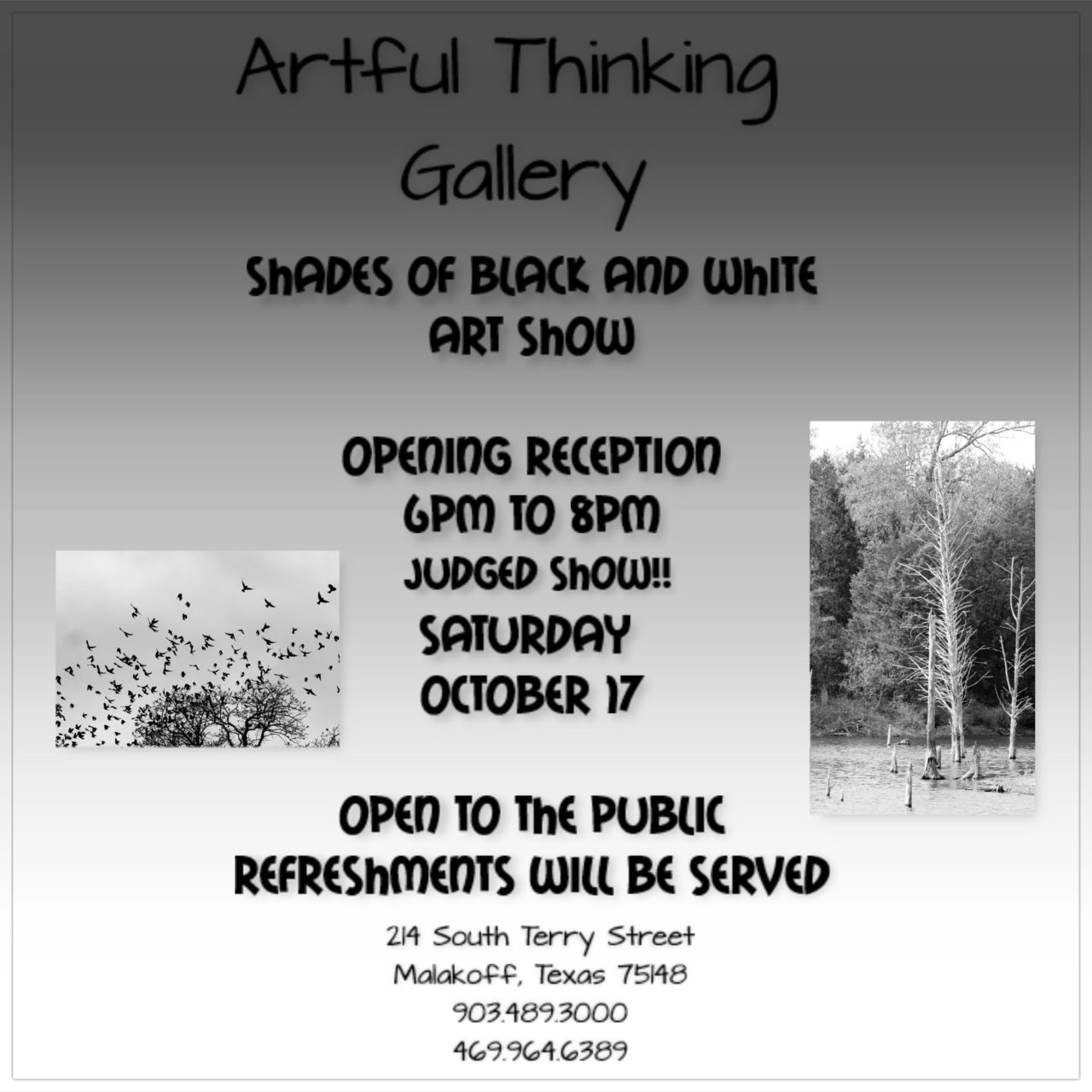 Shades of Black And White Art Show