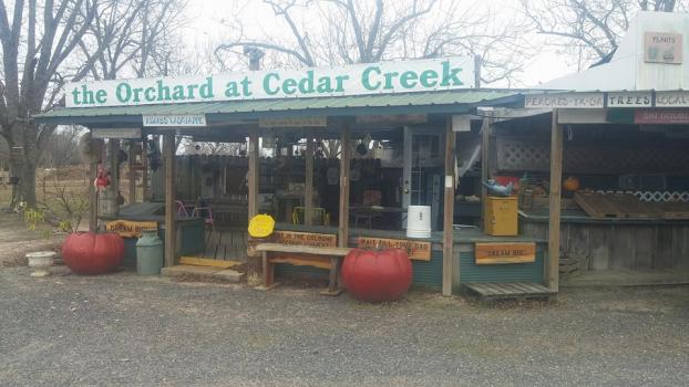 The Orchard at Cedar Creek